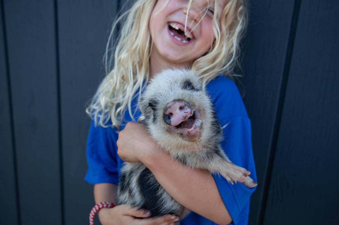 Adorable Girl holding Adorable Minipig