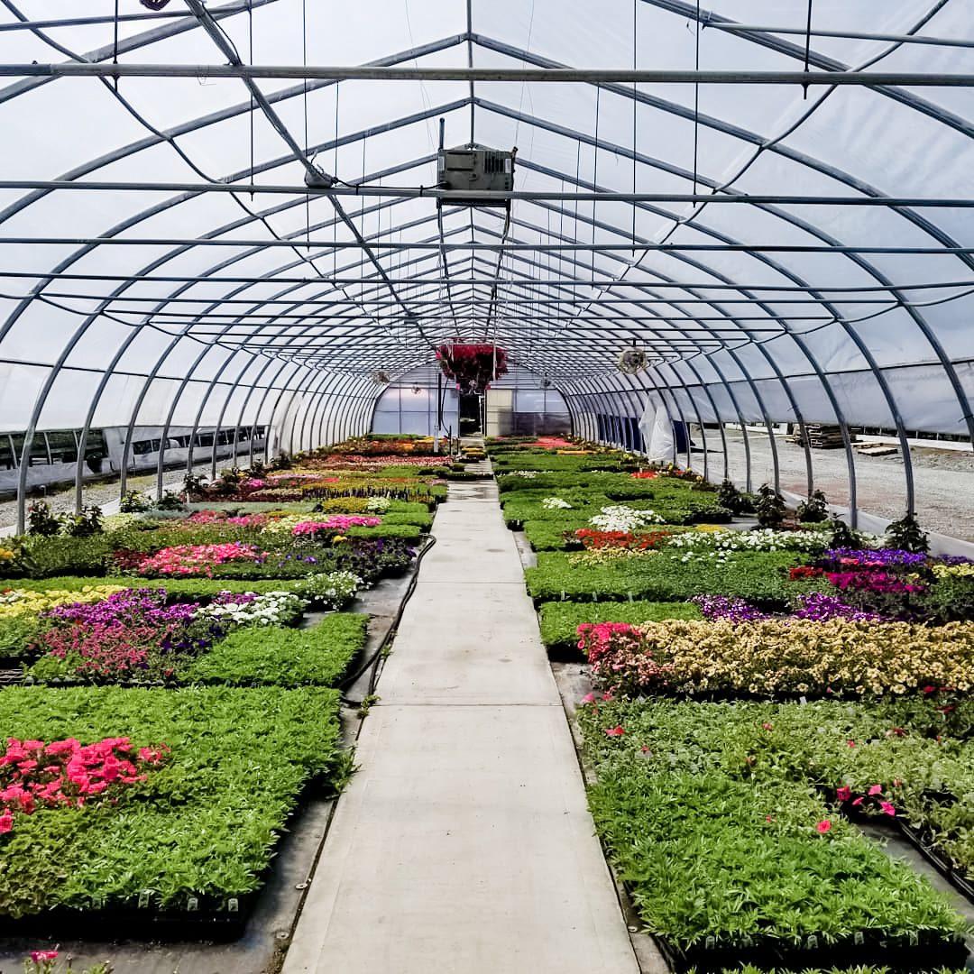 Wholesale Garden
